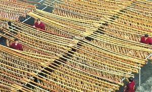 遂川:致富产业 晾晒板鸭