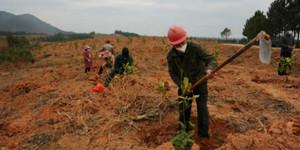 金溪县农技人员一线保生产