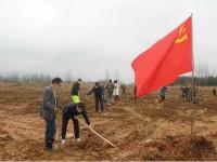 修水党员干部植树打造最美修河岸线