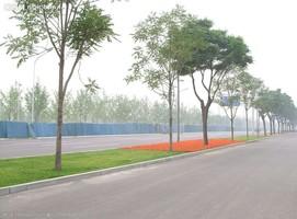 高安:路域环境整治助力乡村振兴
