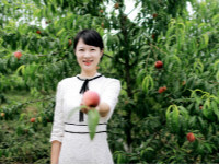 等您来摘!余干大溪乡扶贫基地桃子熟了
