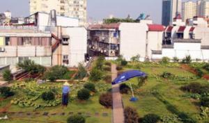 南昌老城区部分街道展开专项整治 让楼顶美起来
