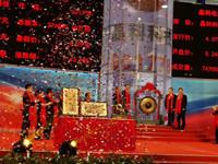 晶科电力科技股份有限公司在上海上市