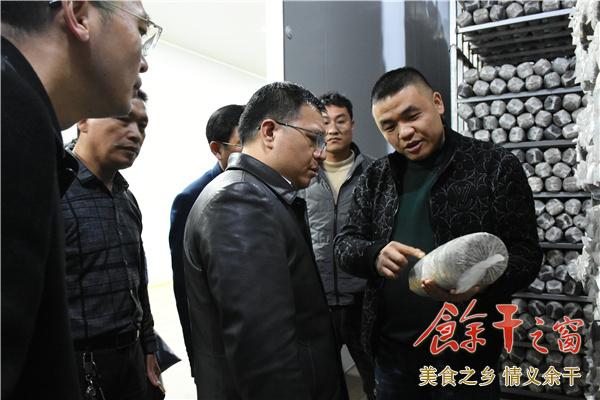 江忠汉陪同副市长刘斌在我县调研农业产业工作